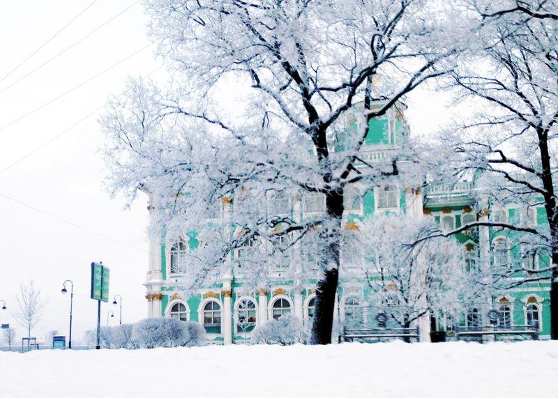 Эрмитаж под снегом   Блог Дом, в который хочется приходить